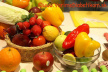 Vitamíny a minerálne látky